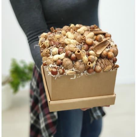 Nut.2